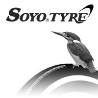 SOYO TYRE / Daiwabo